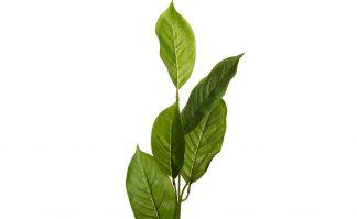 9F27924N-4382 Jacaranda Leaves 84 cm