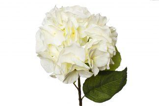 9F28060Mk-1538 Hydrangea White 62 cm