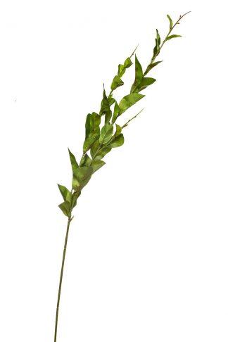 9F28177KJ-3411 Jacquara Leaves 100 cm