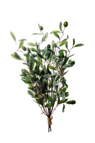 8J-1716 Olive branch 43 cm
