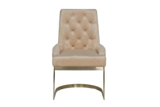 76AR-6210GOLD-BG Metal frame chair beige 65*6...